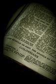 Bíblia série Colossenses sépia