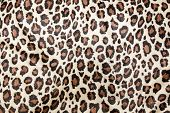 Leopard spots background