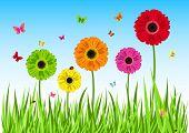 Borboleta de flores de grama verde. Ilustração vetorial