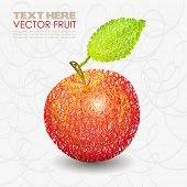 Red apple fruit designs with leaf hand drawn. Vector illustration