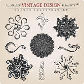 Vector stars Snowflakes vintage heraldic frame decorative