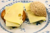 Dutch toast (beschuit) and bread with cheese on a white and blue plate