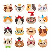 Cute Cats Heads. Cat Muzzle, Domestic Kitty Face Wearing Hat, Scarf And Color Party Glasses Isolated poster