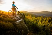 Mountain biking woman riding on bike in autumn mountains forest landscape. Woman cycling MTB flow tr poster