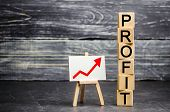 A Red Up Arrow And The Inscription profit. Concept Of Business Success, Financial Growth And Wealt poster