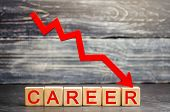 The Inscription career And The Red Arrow Down. Career Down. A Demotion, A Career Crisis. Lowering  poster