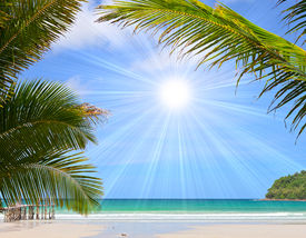 picture of summer beach  - Beautiful tropical beach in the Islands - JPG