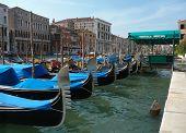 Canal Gondolas, Venice