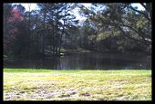 picture of woodstock  - Pond at a park in Woodstock Georgia - JPG