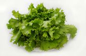 green salad (lettuces)