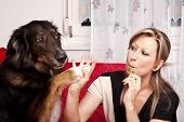 Young Pretty Woman With Dog And E-cigarette