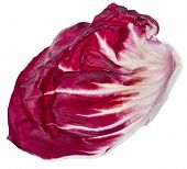 Red Cabbage Radicchio Rosso single leaf isolated on white
