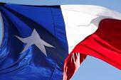 Rippled Texas State Flag