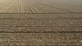 Plowed Acre