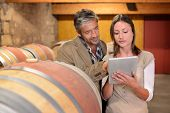 Winemakers in cellar controlling wine market prices on tablet
