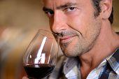 Closeup en enólogo que huele a vino tinto en vidrio