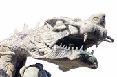 dragon head statue isolated
