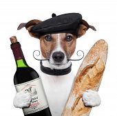 stock photo of beret  - french dog red wine  paris baguete beret - JPG