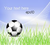 Soccer ball background with net, grass and blue sky