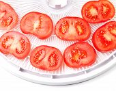 Ripe Tomato On Food Dehydrator Tray, Ready To Dry