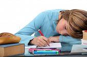 Little kid revising