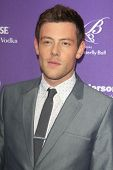 LOS ANGELES - JUN 8:  Cory Monteith arrives at the 12th Annual Chrysalis Butterfly Ball at the Priva