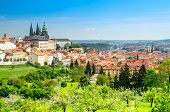 Panoramic View Of Prague With St. Vitus Cathedral