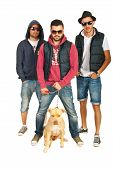 stock photo of pitbull  - Group of three hip hop guys with pitbull dog isolated on white background - JPG