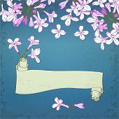 Lilac&scroll