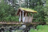 Troll Bridge at Petersburg Alaska