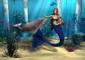 Mermaid And Dolphin