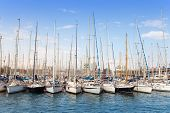 yachts in harbor of Barcelona