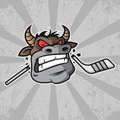 Bull bites hockey stick