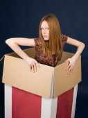 Girl Posing In Cardboard Box