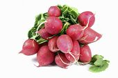 close up of radishes on the white background