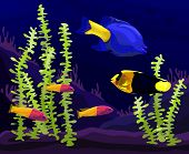 stock photo of paysage  - Vector illustration of the underwater world or aquarium with beautiful tropical fish - JPG