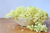 stock photo of elderflower  - Elderflower in a wooden bowl - JPG
