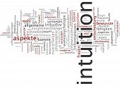Word cloud -  intuition