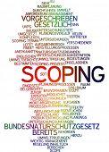 Word cloud - scoping