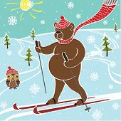 Brown Bear Skiing In Nature.Vector humorous Illustration