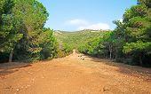 Path In Capo Caccia