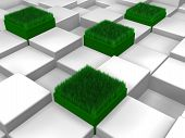 Cubes with grass