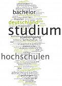 Word Cloud - Studies