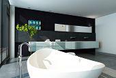 Contemporary bathroom interior with black wall