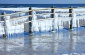 Icicles at the Baltic Sea, Germany