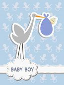 picture of stork  - stork with a baby boy - JPG