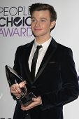 LOS ANGELES - JAN 8:  Chris Colfer at the People's Choice Awards 2014 - Press Room at Nokia at LA Live on January 8, 2014 in Los Angeles, CA