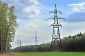 power pylons in a summer forest