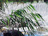 cascade downriver