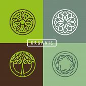 Vector Abstract Emblem - Ecology